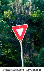 A yield sign in an urban neighbourhood in Canada.