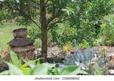 Yinnar Community Garden, Latrobe City, Gippsland, Victoria, Australia.