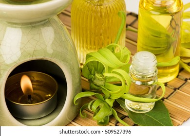 Ylang Ylang essential oil: relieve tension. Body and soul, Conditioning the mind to balance, helps calm the mind. , Help me shine, To hydrate the skin And sensual sex.