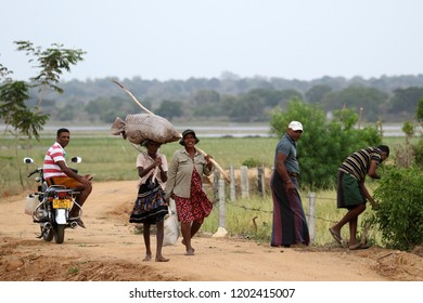 Yoda Lake, Tissamaharama - Sri Lanka, august 2017: Farmers with their goods
