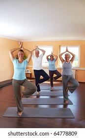 Yoga group in a gym doing Vrikshasana exercise (The Tree)