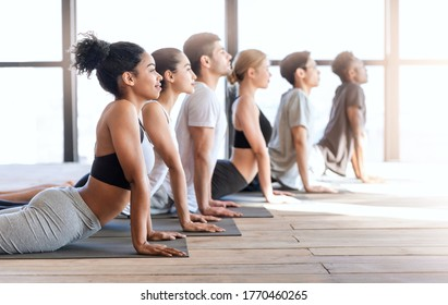 Yoga group members doing cobra pose while excercising in modern loft studio, lying on mats in a row, side view with free space