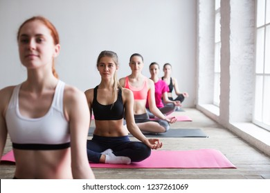 Yoga. Group of women relaxes in gym.