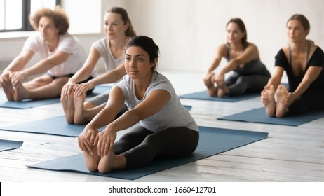 Yoga session led by Indian ethnicity young female coach, group of multi-ethnic like-minded people sitting in mats performing Seated Forward Bend, asana calms brain helps relieve stress, stretches body
