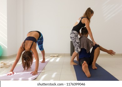 Yoga teacher adjusts student in sitting posture. Yogis practice ashtanga Mysore style. Girl in adho mukha svanasana or downward facing dog pose. Sports wear, training, exercise concepts