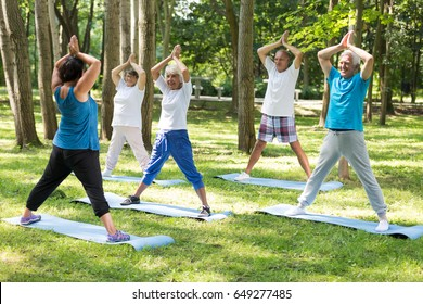 Yoga teacher and group of seniors in a park