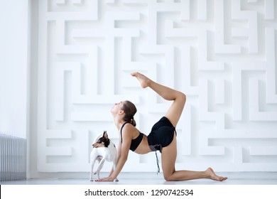 Yoga woman with her dog at a fitness studio doing yoga class. Dog looking for attention.