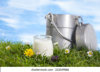 Yogurt and Old style milk jug on the grass with flowers  the sky with clouds on the background.