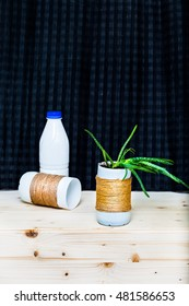 Yogurt plastic container used as aloe vera plant pot. Idea for recycling upcycling plastic
