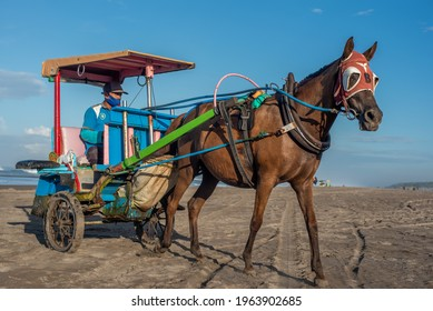 Yogyakarta, Indonesia - April 24 2021 : enjoy the beauty of Parangtritis beach with horse carriage
