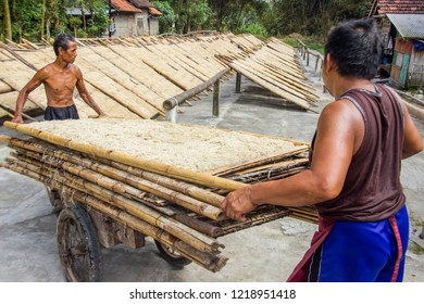 Yogyakarta, Indonesia - August 9th 2018 : The process of drying out Mie Lethek. Mie Lethek is a traditional noodle made from cassava flour, Bantul, Yogyakarta Indonesia