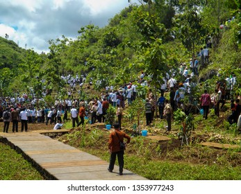 YOGYAKARTA, INDONESIA - DECEMBER,9,2018:BULK PLANTATION LEADS BY THE PRESIDENT OF THE JOKOWI IN THE NATIONAL TREE PLANT DAY