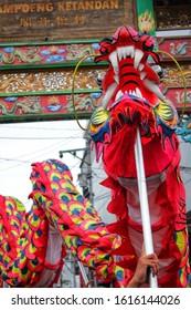 Yogyakarta, Indonesia - January 14, 2020 : Barongsai dance in Kampoeng Kentandan in preparation for Chinese New Year (Imlek).