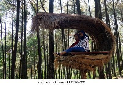 Yogyakarta, Indonesia - June 16, 2018: Visitor taken photo at the Marsupilami shape house in Puncak Becici (pinery).