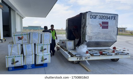 Yogyakarta, Indonesia - June 7th, 2020  - Indonesian Customs officers and Quarantine officers are inspecting Plane and Imported Cargo at Yogyakarta International Airport, Kulon Progo
