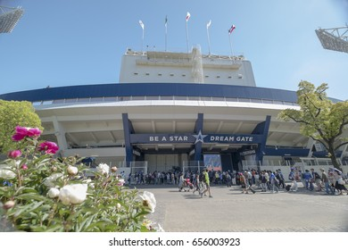 Yokohama baseball stadium in Japan: 5th May 2017