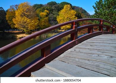 """YOKOHAMA CITY, KANAGAWA PREFECTURE, JAPAN - NOVEMBER 26th, 2020: An Autumn View from the """"Taiko-bashi"""" Arched Wooden Bridge in the """"Jodo""""-style Garden at """"Kintaku-san Shomyoji"""" Buddhist Temple"""