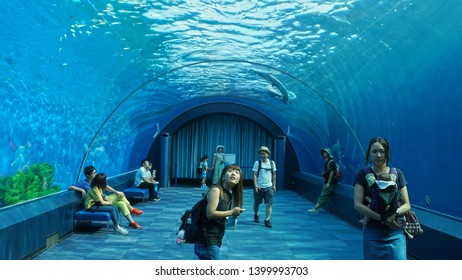 YOKOHAMA, KANAGAWA PREFECTURE, JAPAN - JULY 24 2018: Aqua Museum, one of the four aquariums from Yokohama Hakkeijima Sea Paradise's Aqua Resorts.