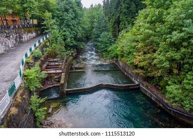 Yopshara river at lake Ritsa, Abkhazia