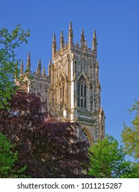 York Minster towering above the trees.