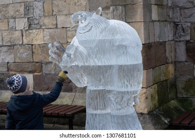 York,North Yorkshire,United Kingdom.2.2.2019.Young boy touching 'Migo' ice sculpture,York Ice Trail,Coppergate Centre.