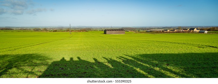 a yorkshire field in the winter sun