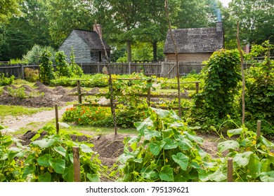 Yorktown, Virginia - 6/25/09: A garden with rustic buildings in Historic Yorktown village, part of Colonial National Historic Park, Virginia, established by the Act for Ports of 1691