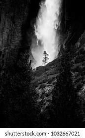 Yosemite Fall from the valley in Yosemite National Park  in Black and White