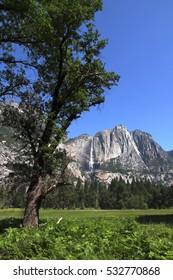 Yosemite Falls - California
