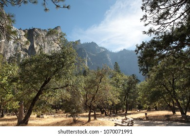 Yosemite National Park california Usa. Picturesque beautiful landscape with great colors in the Yosemite Valley. atmospheric light with trees and the mountains in the background for hike