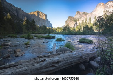 Yosemite National Park environment in august