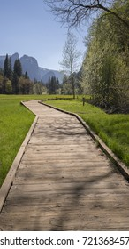 Yosemite National Park - pathway in the valley.