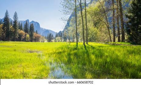Yosemite Valley in spring time.