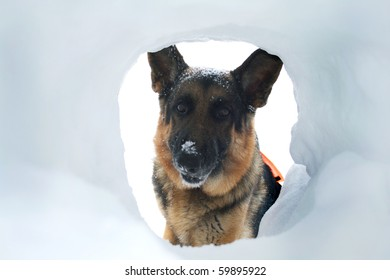 If you are buried in an avalanche, who could imagine a more welcome sight that your hero looking down a hole at you.
