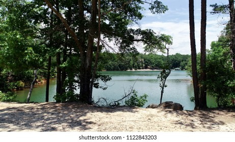 You can look through the scattered trees and view the gorgeous Lake Hartwell.