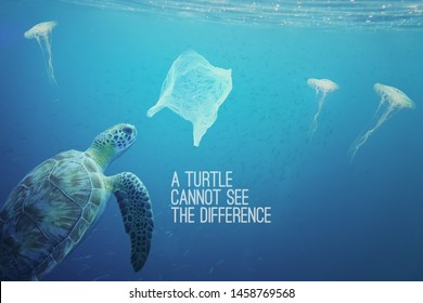 You can see the difference between a jelly fish and a plastic bag floating around under the sea, but a turtle cannot see the difference. Pollution in oceans concept.