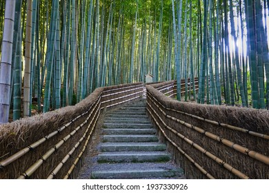 you feel small when you walk up the stairs here in Japan. So peaceful and beautiful.