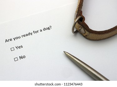 Are you ready for a dog? Question with Yes or No options.