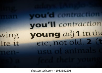 yound word in a dictionary. yound concept, definition.