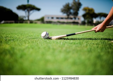 Young adult lifting slither onto a hurl playing hurling in the park