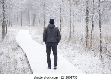 Young adult man alone slowly walking after snowfall. Peaceful atmosphere in white winter day. Enjoying fresh air in park. Back view.
