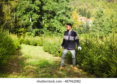 Young Adult Man With A Hatchet Choosing A Christmas Tree