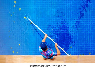 young adult man, personnel cleaning the pool from leaves