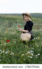 Young adult woman collect flowers on a field in black dress and summer hat with seegrass basket