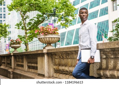 Young African American Graduate Student studying in New York, wearing white long sleeve shirt, blue pants, wristwatch, holding laptop computer, standing by half vintage wall with flowers on campus.