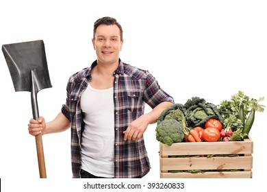 Young agricultural worker holding a shovel and posing next to a crate full of vegetables isolated on white background