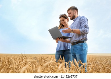 Young agronomists in grain field. Cereal farming