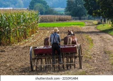 Young amish farmer sowing a field during the fall season.