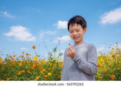 Young asian boy in flower field