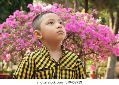 Young asian boy on blooming garden background looking up